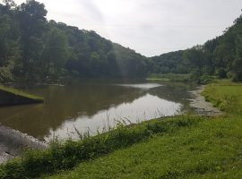 Raccoon Creek Upper Pond Not Creepy